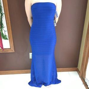 Royal Blue Textured Strapless Long Dress